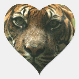 De Stickers van de tijger
