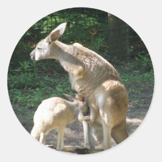 De Stickers van Joey van de kangoeroe