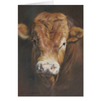 De Stier van Limousin Wenskaart