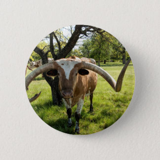 De Stier van Texas Longhorn Ronde Button 5,7 Cm