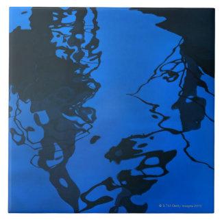 De stijlpatronen van Dali in het water van Haven Tegeltje