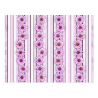 De Strepen van de Bloem van Echinacea Briefkaart