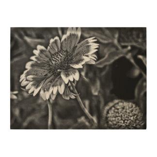 De Studie van de bloem in Zwart-wit Hout Print