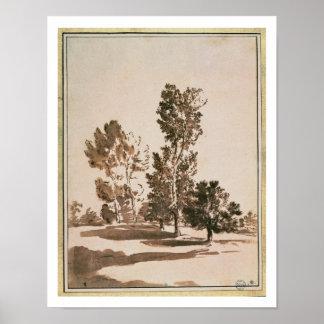 De Studie van de boom (pen & inkt op papier) Poster