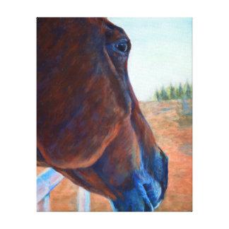 De Studie van het paard in Bruin Gallerij Wrap Canvas