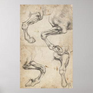 De Studie van Leonardo voor de Benen van het Paard Poster