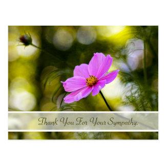 De sympathie dankt u de Roze Kosmos Wildflower van Briefkaart