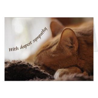 De sympathie van de kat kaart