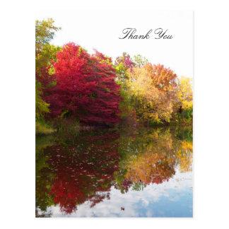 De Sympathie van de Schoonheid van de herfst dankt Briefkaart