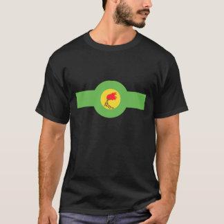 De t-shirt van de Luchtmacht van Zaïre