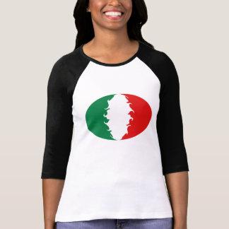 De T-shirt van de Vlag van Italië Gnarly