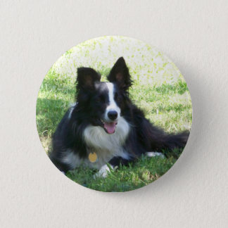 De T-shirts van border collie Ronde Button 5,7 Cm