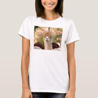 De t-shirts van de alpaca