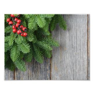 De tak van de kerstboom met de Bes van de Hulst Fotografische Afdruk