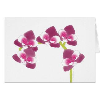 De Tak van de orchidee Kaart