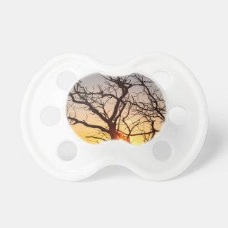 De Takken die van de boom in het Zonlicht dansen Baby Speentjes