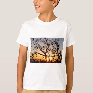 De Takken die van de boom in het Zonlicht dansen T Shirt