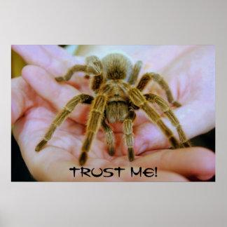 De tarantula, vertrouwt op me! poster