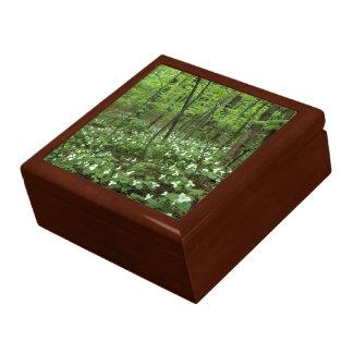 De tegel-bovenkant van de Hemel van Trillium houte Decoratiedoosje