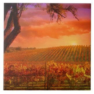 De Tegel van de Kunst van het Land van de wijn Keramisch Tegeltje