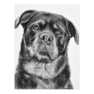 De Tekening van Rottweiler Briefkaart