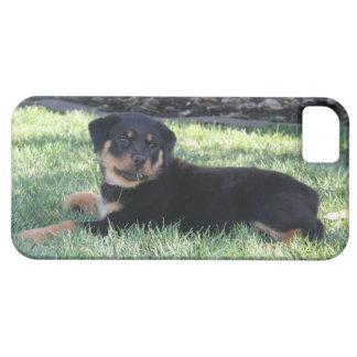 De telefoonhoesje van het Puppy van Rottweiler Barely There iPhone 5 Hoesje