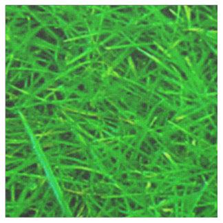 De Textuur van het gras Stof