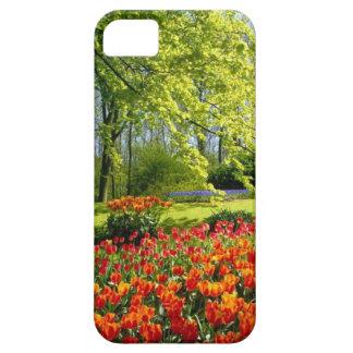 De tijd van de tulp, tuinen in Keukenhof Barely There iPhone 5 Hoesje