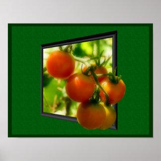 De Tomaten van de kers uit de Druk van het Poster