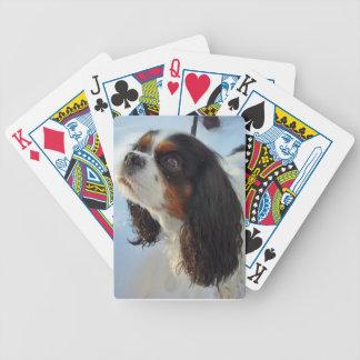 De tri-gekleurde Arrogante Speelkaarten van het Sp Poker Kaarten