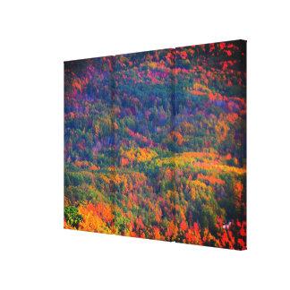 De Triptiek van de Kleuren van oktober Canvas Afdrukken