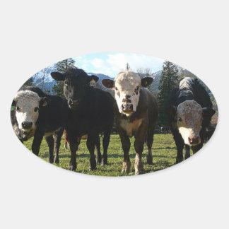 De Troep van de koe Ovale Sticker