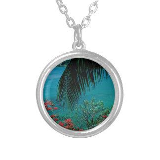 De tropische Baai Bequia van de Vriendschap van he Sieraden
