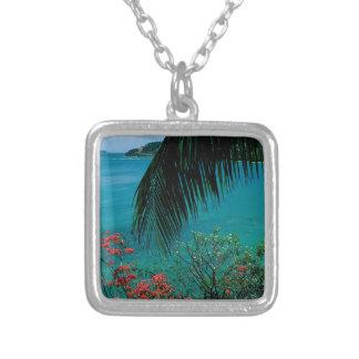 De tropische Baai Bequia van de Vriendschap van he Hangertje