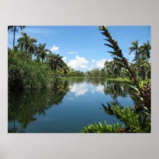 De Tropische Botanische Tuin van Fairchild Poster