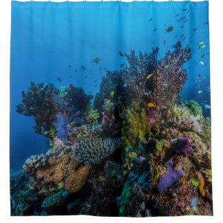 De tropische Gift van het Zee van het Koraal van Gordijn 0