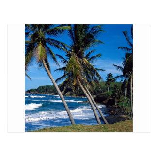 De tropische Golven St Lucia van de Zomer van het Briefkaart