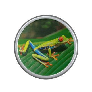 De tropische Kikker van de regenwoud groene Bluetooth Luidspreker