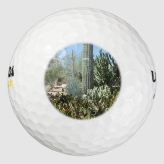 De Tuin van de Cactus van Arizona Golfballen