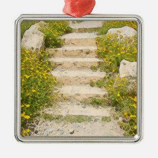 De tuin van de waterverf zilverkleurig vierkant ornament