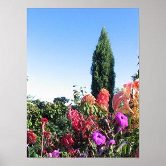 De Tuinen van Allerton, McBryde Tuinen, Ingang Plaat