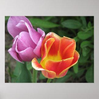 De Tulpen van Pasen Print
