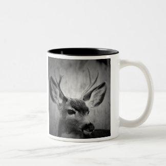 De tweekleurige Mok van de Koffie met foto's van