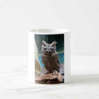 De Uil van de doordringende kreet Koffiemok