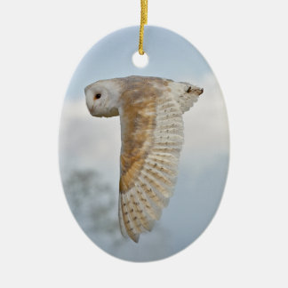 De Uil van de schuur siert tijdens de vlucht Keramisch Ovaal Ornament