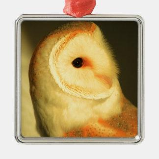 De uil van de schuur zilverkleurig vierkant ornament