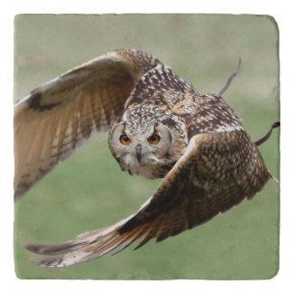 De Uil van Eagle tijdens de vlucht Trivet