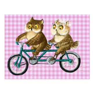 De uilen van de fiets briefkaart