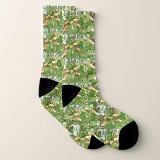 De Unisex-Sokken van de Vijgcactus Sokken