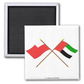 De V.A.E en Abu Dhabi Gekruiste Vlaggen Magneet